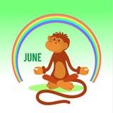 O macaco engraçado pratica a ioga Imagens de Stock Royalty Free