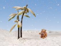 O macaco sonhador olha a neve que cai do céu perto das palmeiras cobertos de neve Fotografia de Stock Royalty Free