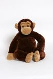O macaco vê, macaco faz Fotos de Stock Royalty Free