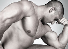 O macho muscular perfeito fotografia de stock