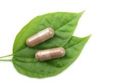 O macro dos comprimidos sobre a folha verde isolou-se Imagem de Stock Royalty Free