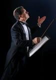 O maestro da música Imagem de Stock
