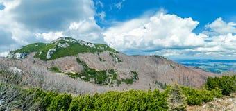 O magnificência alpino Imagens de Stock