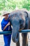 O Mahout e seu elefante no elefante de Samphran moeram & jardim zoológico o 24 de maio de 2014 em Nakhon Pathom Fotos de Stock Royalty Free