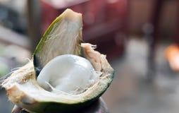 O malai branco macio da polpa de coco escavou fora do coco cru focalizou seletivamente fotos de stock royalty free