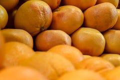 O mandarino alaranjado fresco, muitas tangerinas maduras como o fundo ?itrus frutifica textura, teste padrão da tangerina foto de stock royalty free