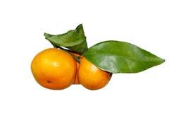 O mandarino com folhas verdes Fotografia de Stock