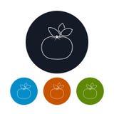 O mandarino do ícone nos contornos Foto de Stock