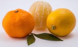 O mandarino e limão no fundo branco imagens de stock