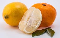 O mandarino e limão no fundo branco Imagem de Stock Royalty Free