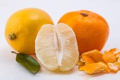 O mandarino e limão no fundo branco fotos de stock