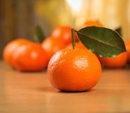 O mandarino fresco com folhas Imagem de Stock