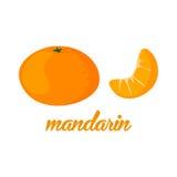 O mandarino frutifica cartaz ao a descrição do estilo dos desenhos animados inteira e o meio de citrinos suculentos frescos no fu Imagens de Stock