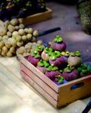O mangustão está em uma caixa de madeira pequena Fotografia de Stock Royalty Free