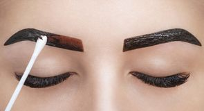 O maquilhador aplica a hena da pintura nas sobrancelhas em um salão de beleza fotografia de stock royalty free