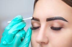 O maquilhador aplica a hena da pintura nas sobrancelhas em um salão de beleza imagem de stock royalty free
