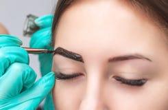 O maquilhador aplica a hena da pintura nas sobrancelhas em um salão de beleza foto de stock royalty free