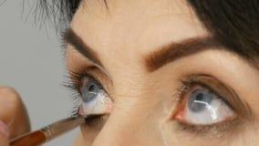 O maquilhador profissional pinta o rímel no fim de meia idade adulto da mulher acima filme