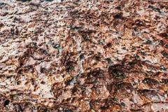 O mar apedreja o fundo Fotografia de Stock Royalty Free
