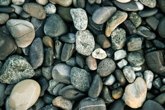 O mar apedreja a textura Fotos de Stock