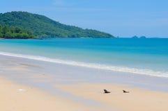 O mar azul Fotografia de Stock Royalty Free