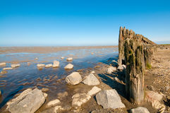 O mar de wadden fotografia de stock royalty free