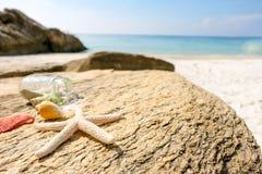O mar descasca a estrela do mar nas rochas, verão do fundo fotografia de stock royalty free