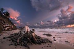 O mar descasca a história Imagens de Stock Royalty Free