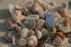 O mar descasca marrom, branco e vidro e estilhaços do mar arenosos na praia Fotos de Stock