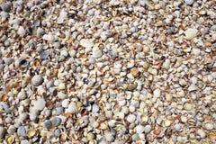 O mar descasca o fundo Fotos de Stock Royalty Free