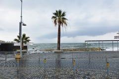 O mar do dia de Limassol janeiro Fotos de Stock Royalty Free