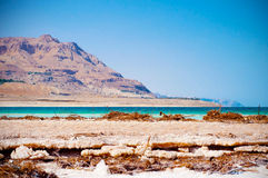O Mar Morto imagem de stock royalty free