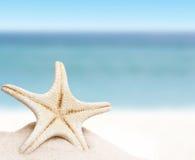 O mar protagoniza na areia Foto de Stock Royalty Free
