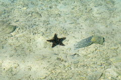 O mar protagoniza no mar cubano Imagem de Stock