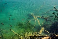 O marco natural principal da Croácia é os lagos Plitvice com as cascatas das cachoeiras Água fria clara esmeralda no fundo imagem de stock