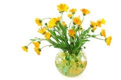 O Marigold floresce em um vaso com grânulos coloridos Imagem de Stock