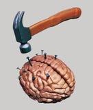O martelo conduz pregos no cérebro humano Fotografia de Stock Royalty Free