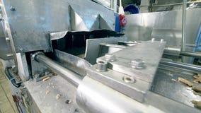 O material alimentar cru está obtendo processado pelo transporte video estoque