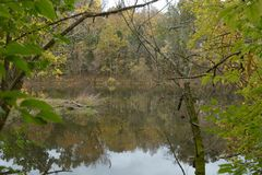 O mato grosso da fortaleza Rosecrans leva a uma lagoa pequena imagens de stock royalty free