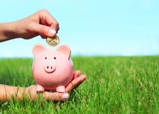 O mealheiro e a moeda na fêmea cedem a grama verde Imagens de Stock Royalty Free