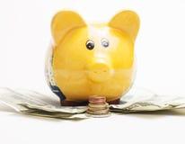 O mealheiro e a pilha amarelos de moedas do dinheiro isoladas sobre o fundo branco loteiam o dinheiro do dólar sob ele Fotos de Stock