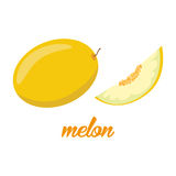 O melão frutifica cartaz no estilo dos desenhos animados descrição inteira e metade Suculento fresco ao incluir branco do fundo Imagens de Stock Royalty Free