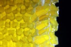 O mel de pente do corte incandesce em um fundo preto Imagens de Stock Royalty Free