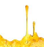 O mel doce goteja sem emenda foto de stock royalty free