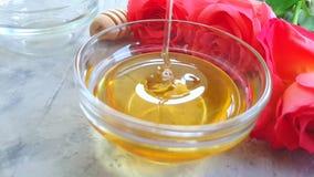 O mel fresco aumentou flor no gotejamento concreto cinzento do movimento lento do fundo video estoque