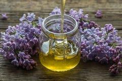 O mel orgânico derrama dentro um frasco de vidro, envolvido em uma flor da mola, imagens de stock royalty free
