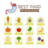 O melhor alimento para o estômago ilustração royalty free