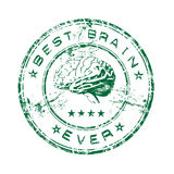 O melhor carimbo de borracha do cérebro Fotografia de Stock