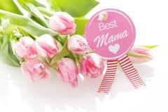 O melhor cumprimento do dia de mães da mamãe Foto de Stock