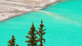 O meltwater da geleira de Peyto flui no lago Peyto no parque nacional de Banff filme